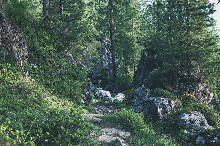 對於我們的健康而言,地球的自然環境是否完好無損絕非無關緊要。人類與自然的關係對於...