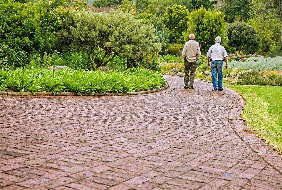 若要讓長輩們開開心心地出門,平平安安地回家,這些事項能妥善地準備好,是很重要的。...