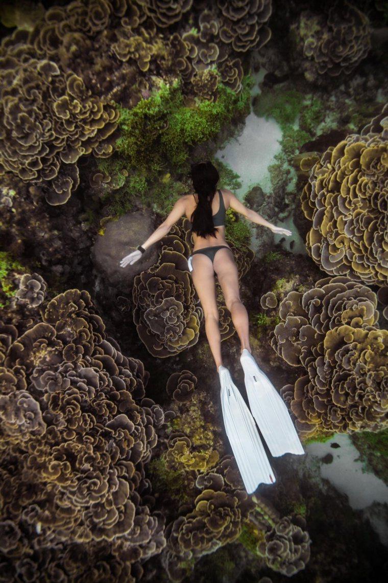 業者強調遊客參與海洋休閒運動勿隨意撿拾沙石、破壞珊瑚甚至危害海洋生物以免遭檢舉開...