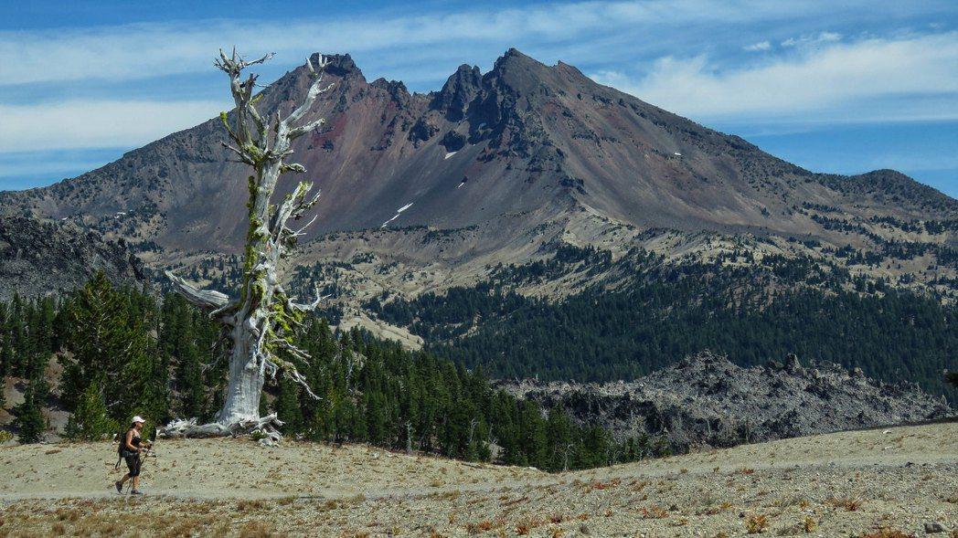 「荒野」是什麼?圖為美國德舒特國家森林。 圖/U.S. Forest Service