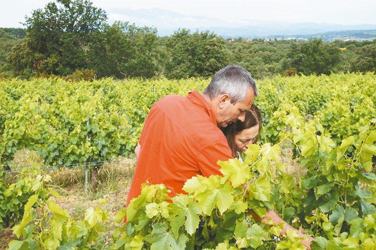 自然酒農夫妻檔紅圍巾(左)與Yoyo。圖/Rebecca提供 ※ 提醒您:禁止...