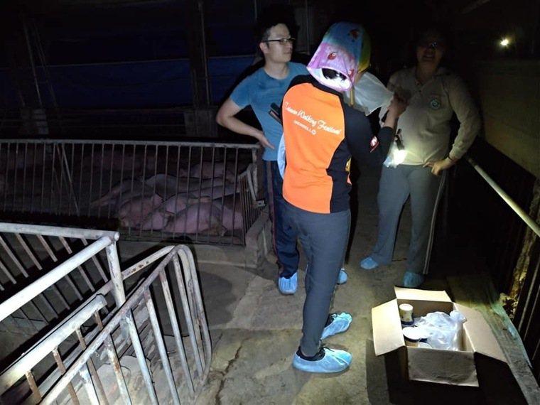 衛福部疾管署病媒病毒及立克次體實驗室研究團隊,去年6月在台灣北中南東等地的豬舍、...