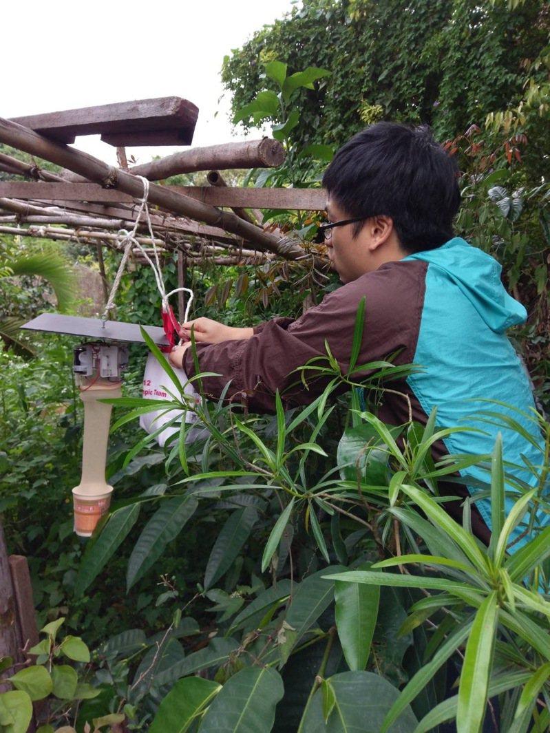 衛福部疾管署病媒病毒及立克次體實驗室研究團隊,去年6月在台灣北中南東等地的豬舍、濕地、公園進行病媒蚊監測時,意外在北部溼地的環紋家蚊及中部豬舍附近的三斑家蚊身上,發現了坦布蘇病毒,這也是台灣首度監測出坦布蘇病毒。圖為研究人員在豬場進行蚊子採集監測。圖/疾管署病媒病毒及立克次體實驗室提供