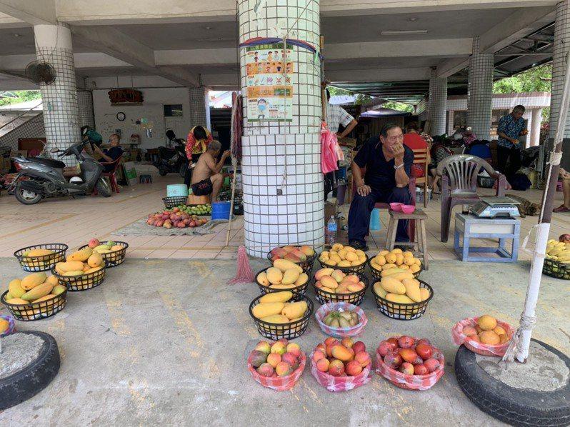 台南市農產運銷公司左鎮場即使在芒果產季,也剩下零星老農擺攤苦撐。記者吳淑玲/攝影