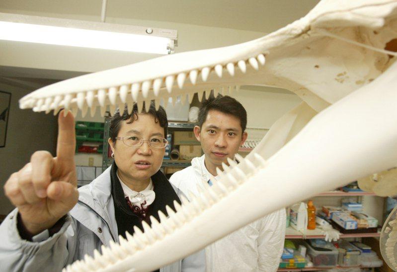 環保團體日前質疑考試委員被提名人周蓮香(左)曾在國光石化開發案建議開發單位訓練白海豚轉彎,呼籲立法院不要通過周蓮香的人事案。本報資料照