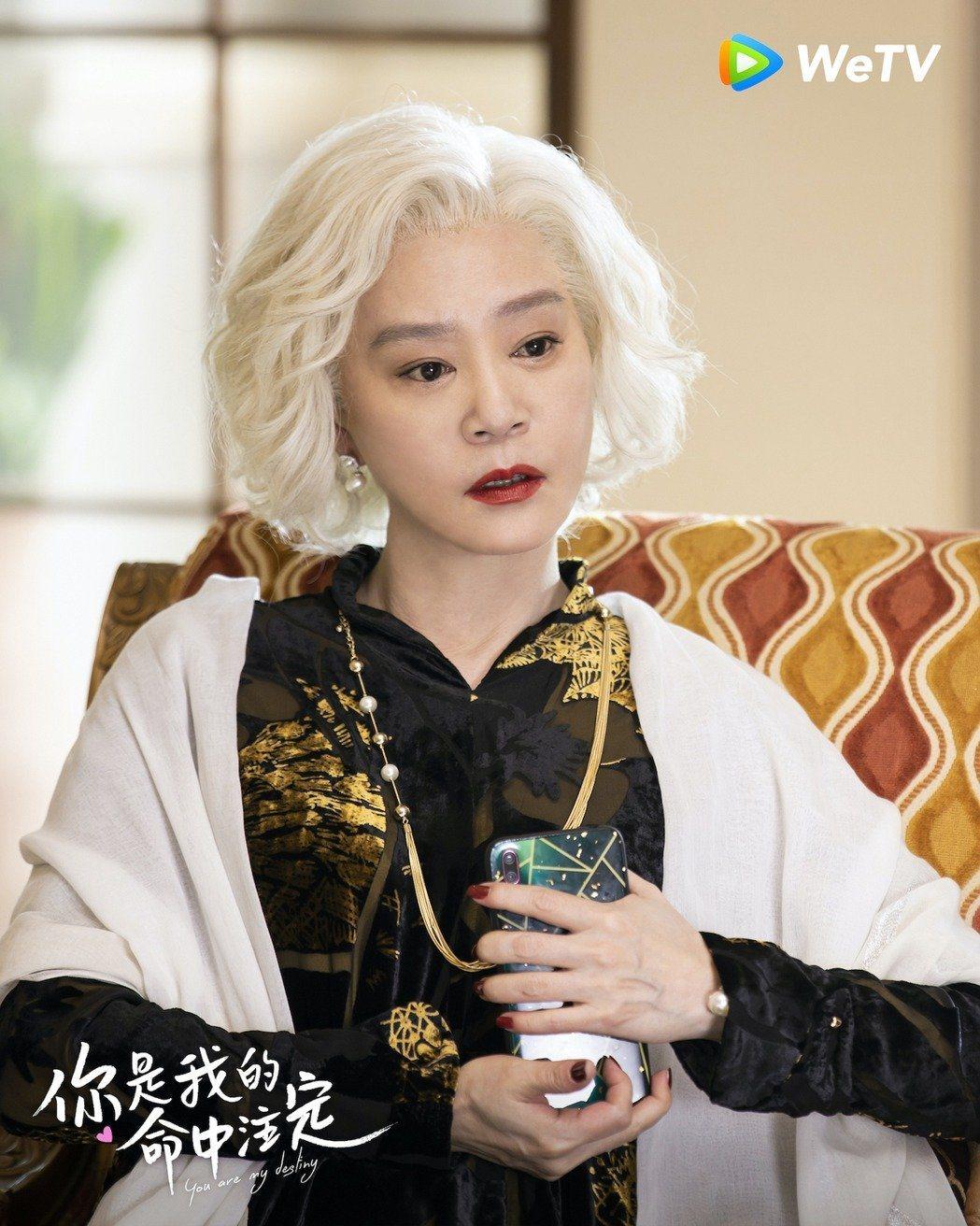 劉雪華在「你是我的命中注定」中飾演關鍵的奶奶一角。圖/WeTV提供