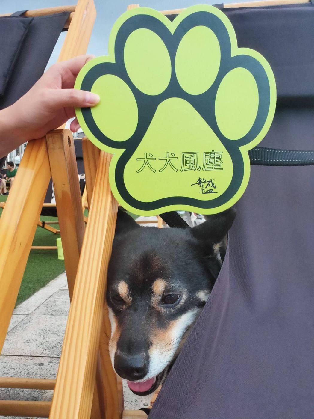 「犬犬風塵」在7/3日全台戲院上映之前,因應流浪動物公益愛心與「防疫新生活運動」...