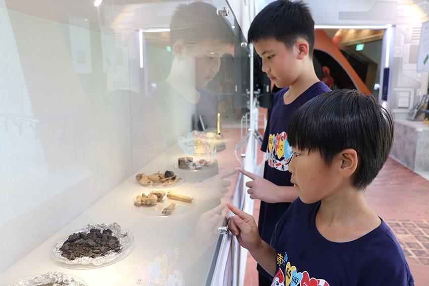 「科技考古特展」展出多件十三行遺址出土的有機標本。 十三行博物館/提供