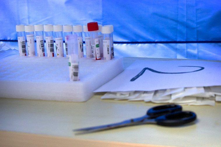 疫苗新希望,六大洲競賽試驗,今夏最關鍵50%有效。 圖/魏碧洲