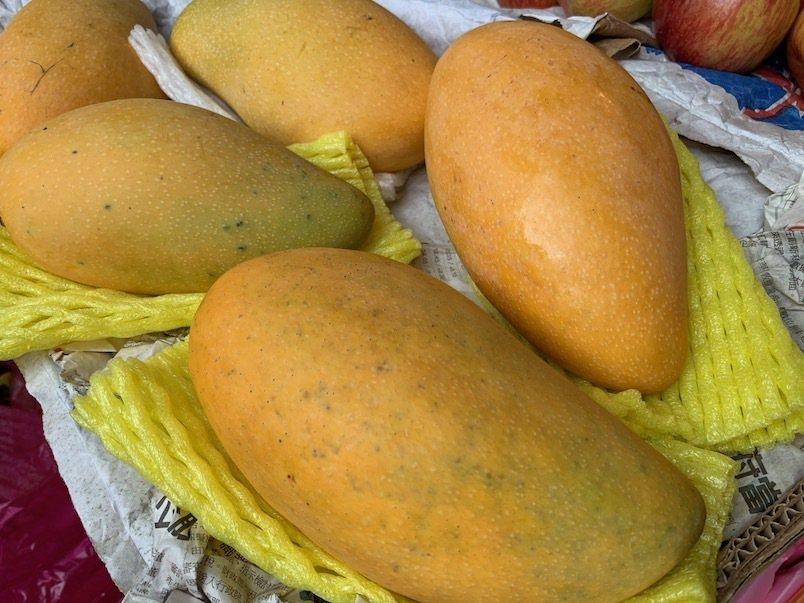 新鮮金煌芒果