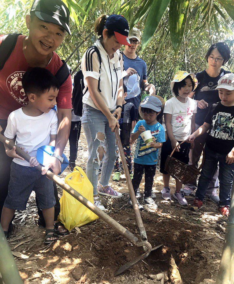 一日筍農深入觀音山認識綠竹筍,體驗「採筍趣」。記者吳亮賢/攝影