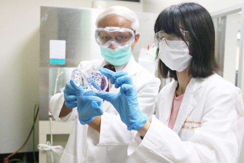 弘光科大生科系助理教授賴易成(左)和團隊發現,「異鼠李素葡萄糖苷」具輻射保護作用。記者游振昇/攝影