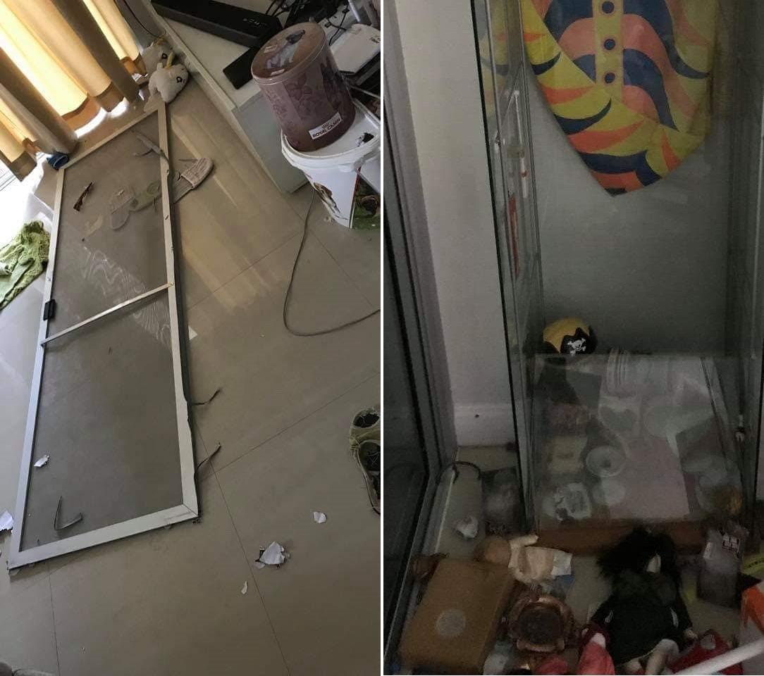 主人不在家二哈興奮拆屋 回家驚見災難現場超崩潰