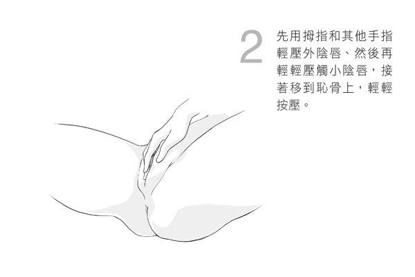 先用拇指和其他手指輕壓外陰唇、然後再輕輕壓觸小陰唇,接著移到恥骨上,輕輕按壓。圖...