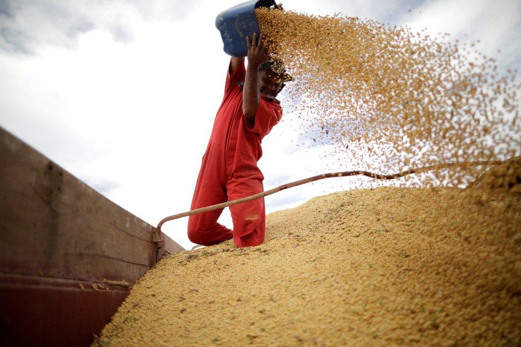 中國的糧食主要進口來源是全球糧食最大出口國「美國」,如果國際糧食供應鏈失靈,中國大難臨頭。 圖/路透社