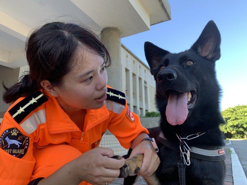 中士領犬員宋莉亞來自台中於金馬澎分署服務,目前帶領一隻母德國狼犬,負責緝毒任務。記者洪哲政/攝影