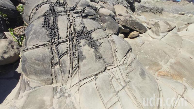 小野柳地質學名為「富岡砂岩」,由厚層砂岩與薄層泥岩交互沈積,因為地質構造的變動及海浪長年累月的侵蝕沖刷,呈現出造型奇特的地質現象。記者尤聰光/攝影