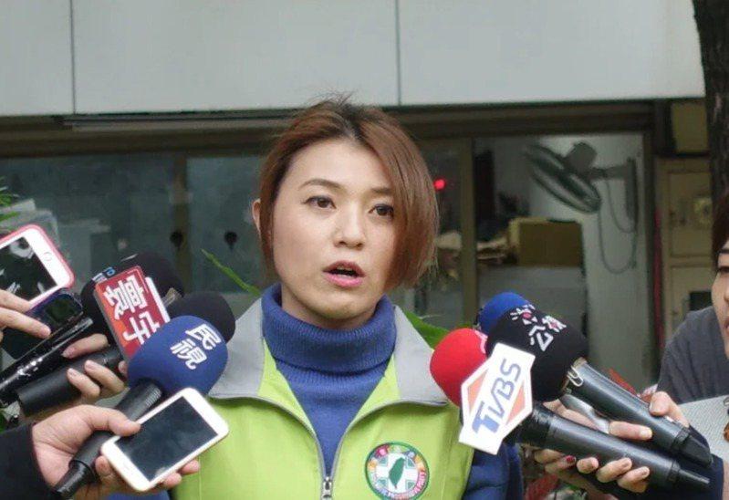 民進黨發言人顏若芳。圖/聯合報系資料照片