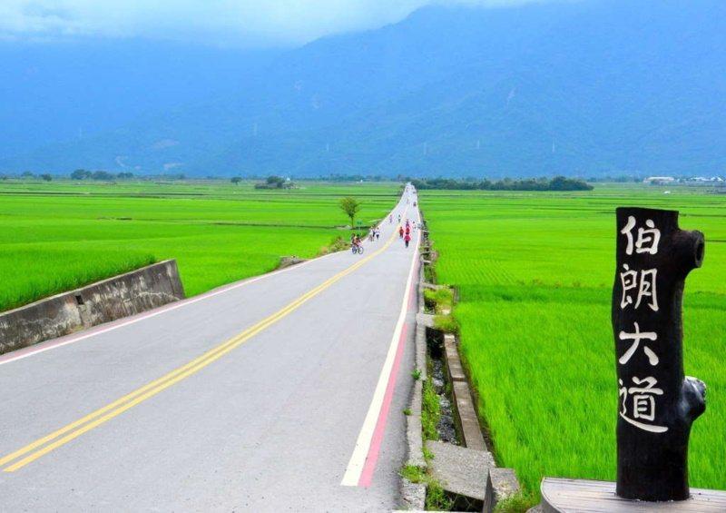 台東「池上環鄉自行車道」,其中一段的熱門打卡景點「伯朗大道」,是來池上騎鐵馬絕對...