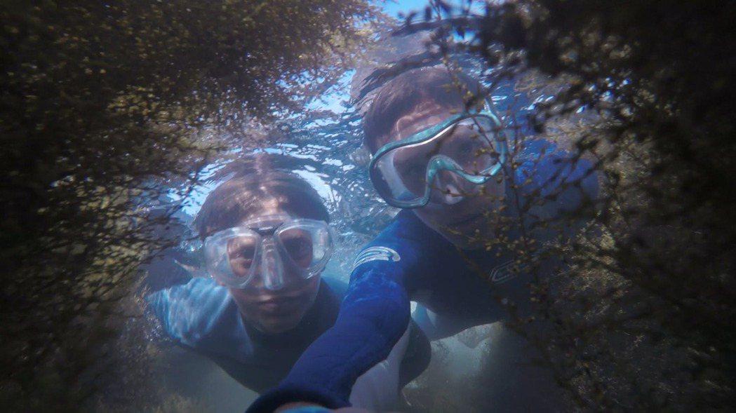 在所有的休閒運動中,潛水大概是麻煩度頗高的一種。 圖/pexels