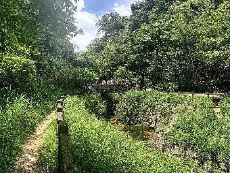 豹山溪步道,沒有污染的淨土,有如森林般的超級涼爽,小溪水潺潺流向低窪處,幾乎是見底的,但是,集水處的魚兒卻好多好多,保護地是禁止捕捉的。