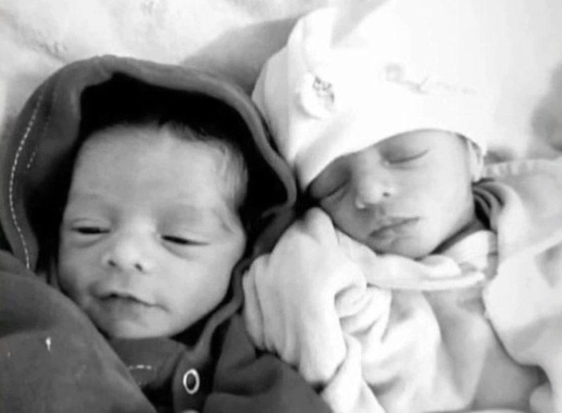 26天大的雙胞胎女嬰慘遭家中飼養的拉布拉多咬死。圖擷自每日郵報
