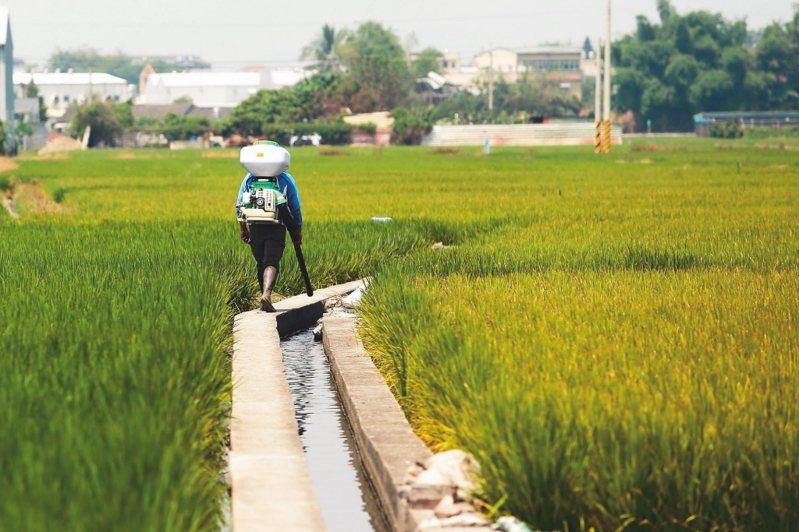 農田水利會收歸國有後,首度招考新進人員。預計錄取人數為二五九人。 圖/聯合報系資料照片