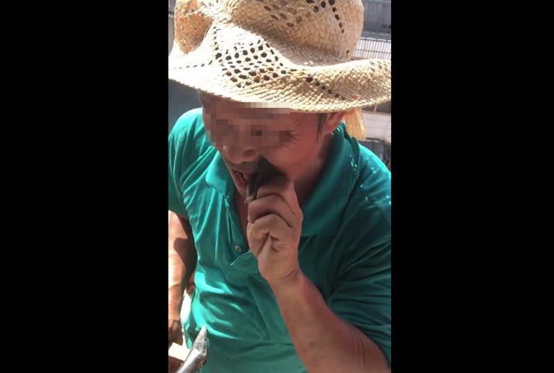 男子將小蝙蝠放進嘴中咀嚼,之後吞進肚裡。圖擷自爆料公社