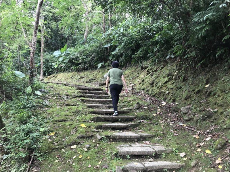 花蓮縣鯉魚潭風景區的鯉魚山,有多條步道,適合健行避暑。 圖/王燕華 攝影