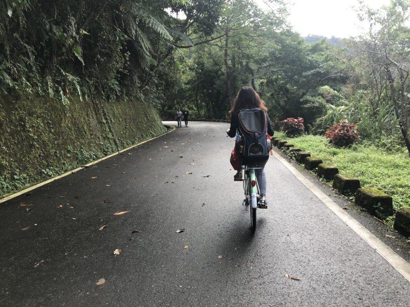 花蓮縣鯉魚潭環潭步道平緩,可以散步健行,或騎腳踏車一遊。 圖/王燕華 攝影