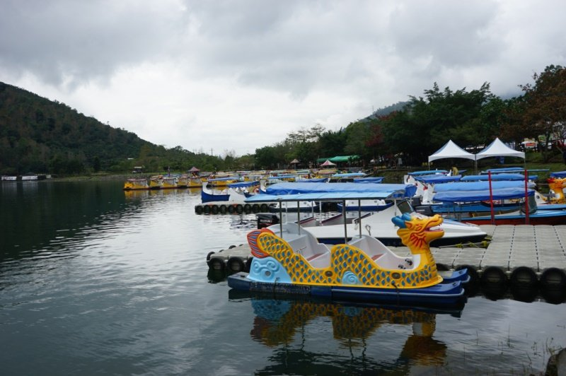 花蓮縣鯉魚潭潭畔有不少腳踏船供出租遊湖。 圖/王燕華 攝影