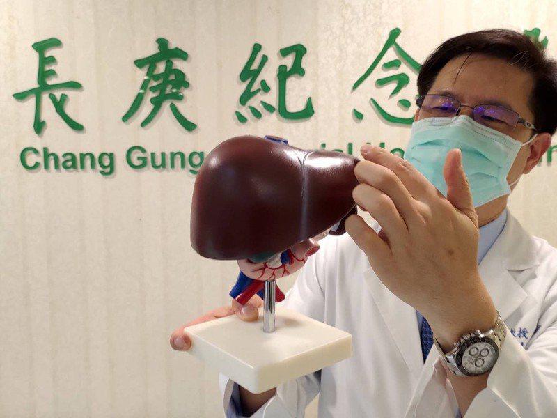林口長庚醫院從接受質子治療的600多位肝癌病患成功經驗發現,病患兩年內肝癌局部控制率達94%。記者陳雨鑫/攝影