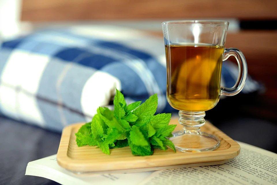 若民眾喝膩白開水,想來點不一樣口味的飲品,薄荷茶沁涼口感也是好選擇。 圖/pix...