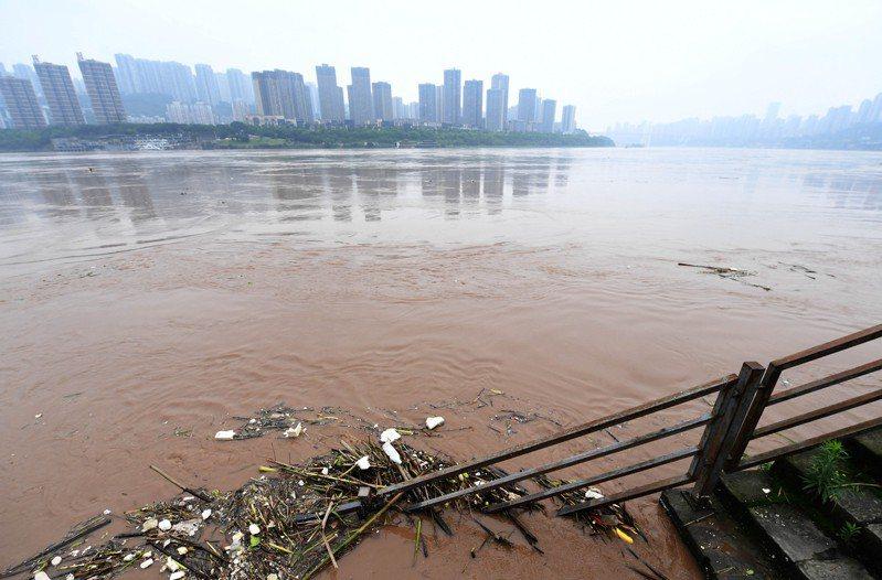 中國央視新聞app(應用程式)下午報導,長江中下游幹流主要控制站水位持續上漲,即將超過警戒水位。圖為長江重慶段水位2日持續上漲,江邊則堆積不少的漂浮物。(中新社)