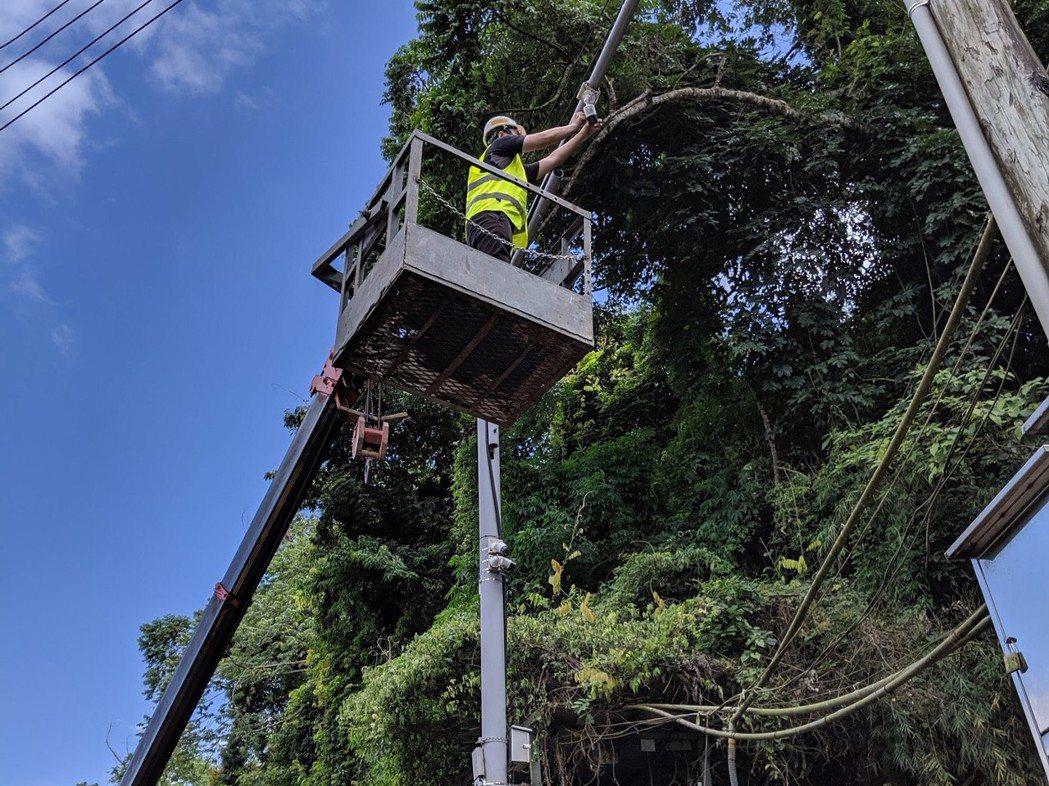 中興大學團隊在三米高空中安裝AI自動化動物辨識系統。 圖/中興大學機械系提供