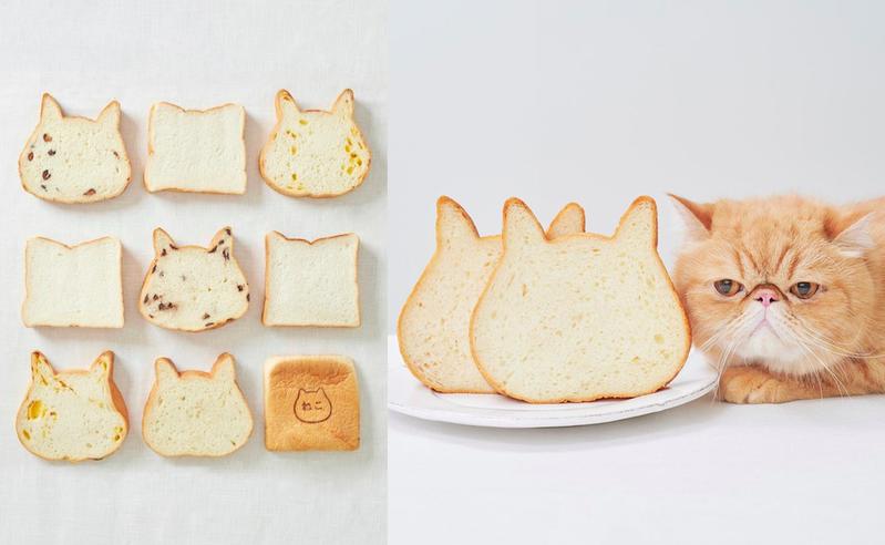 日本「貓咪吐司」將快閃來台。 圖/Neko Neko Shokupan