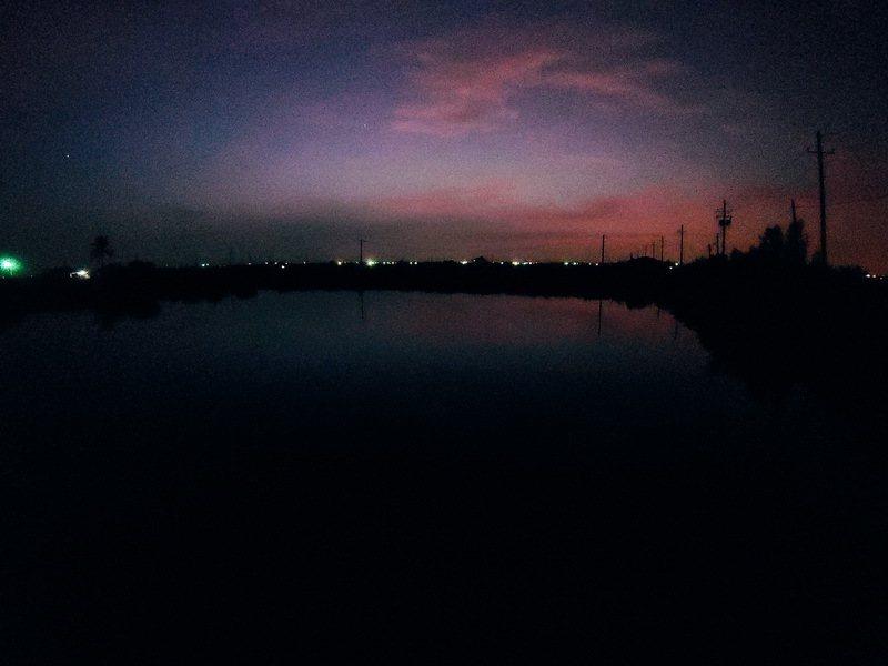 魚塭上的清晨