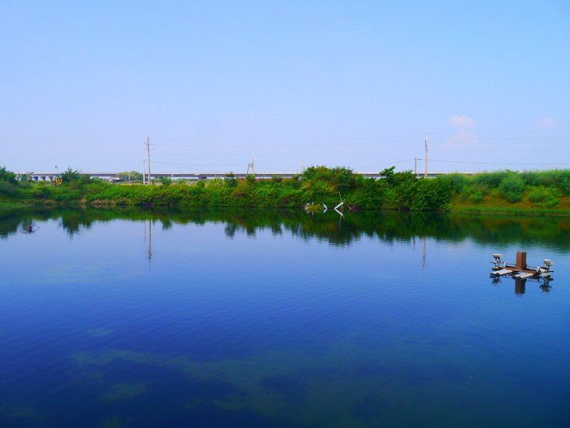 欖人生態民宿,魚塭