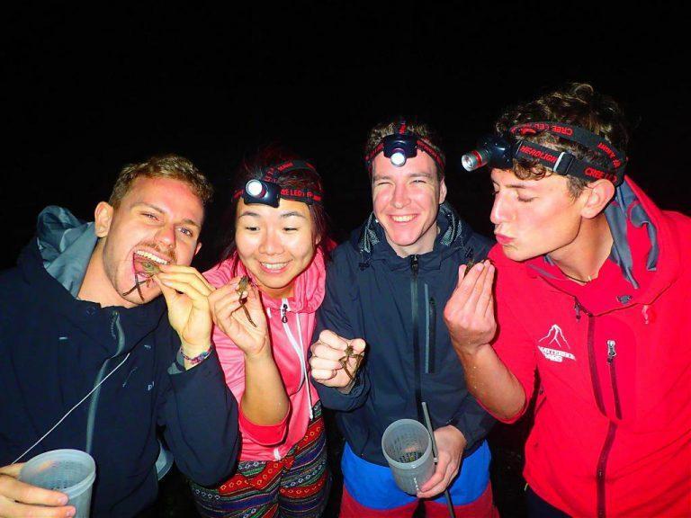 ▲夏日夜間活動體驗-夜間抓蝦。(圖/Tripbaa趣吧!達人帶路)