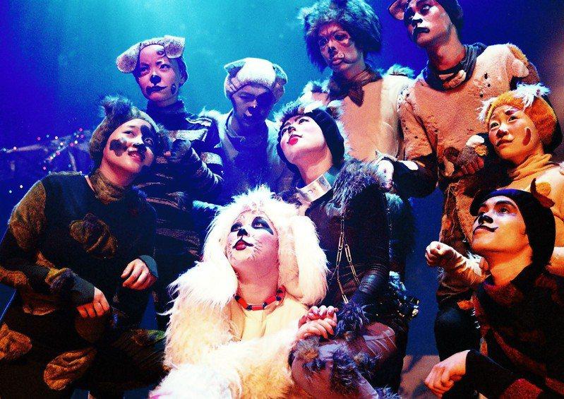 疫情趨緩,如果兒童劇團7月19日下午於台中豐原葫蘆墩文化中心推出經典大型歌舞劇「流浪狗之歌」。圖/葫蘆墩文化中心提供