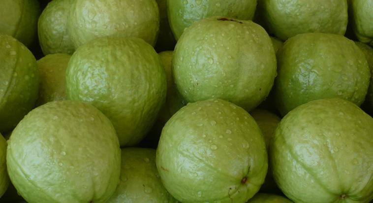 水果選擇吃芭樂、番茄、蘋果、木瓜、鳳梨、葡萄、草莓、柳橙、櫻桃等中低GI值(糖分...