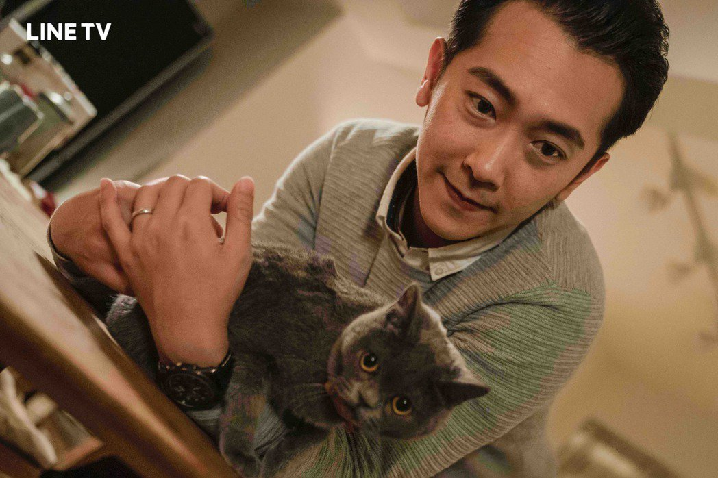 施名帥在「黑喵知情」中與英國短毛貓「麒麟」互動。圖/LINE TV提供