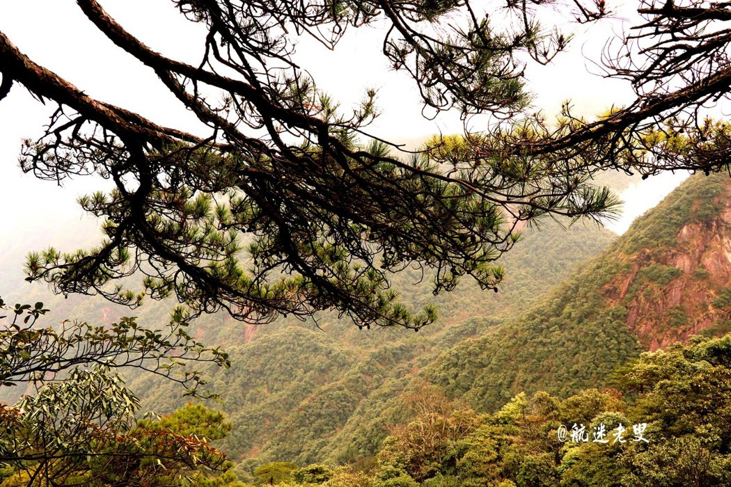 我喜歡這裡,人與自然的相容, 呼吸天地之氣,化心靈之污濁。