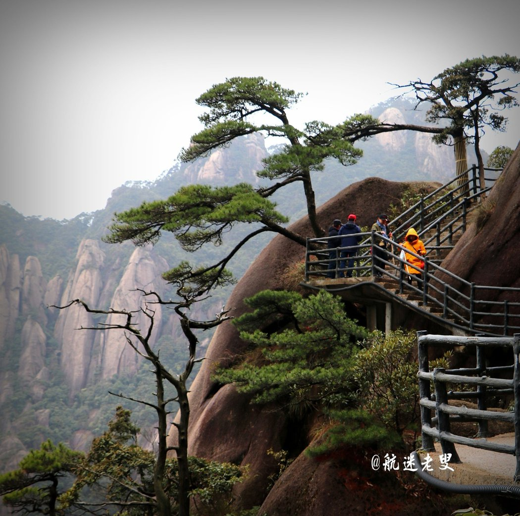 黃山有迎客松,那麼三清山也有棵迎客松,這也是三清山旅遊時必拍的景點。