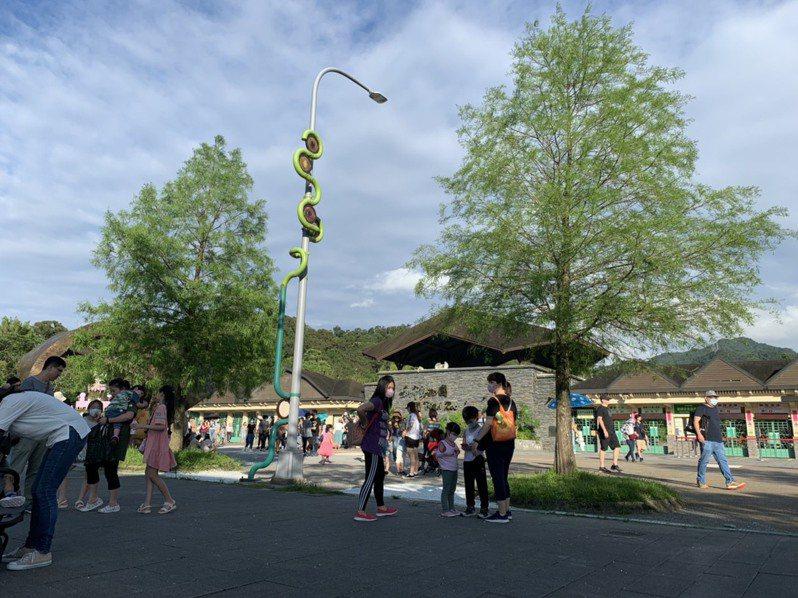 台北市立動物園早上9點開園,傍晚5點閉園,4點是最後入園時間。記者趙宥寧/攝影