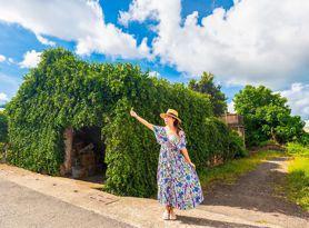 能拍還能吃!墾丁滿州「愛玉樹屋奇景」萌翻,絕美綠籬打造美拍新亮點