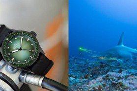 疫情過後的生態多樣性危機 ORIS Blancpain限量腕表 投身海洋保育