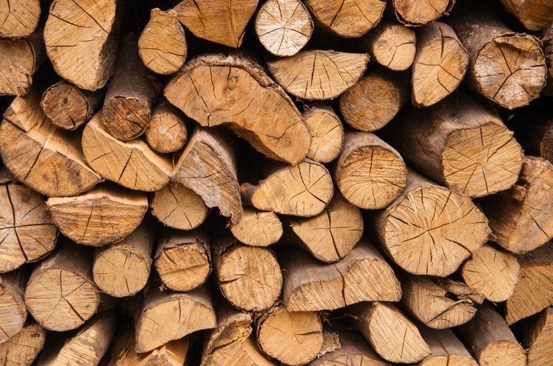 木頭示意圖。 Ingimage