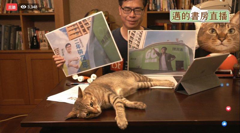 民進黨高雄市長補選參選人陳其邁今晚在自家書房直播,愛貓「小米」相當搶鏡。記者王慧瑛/攝影