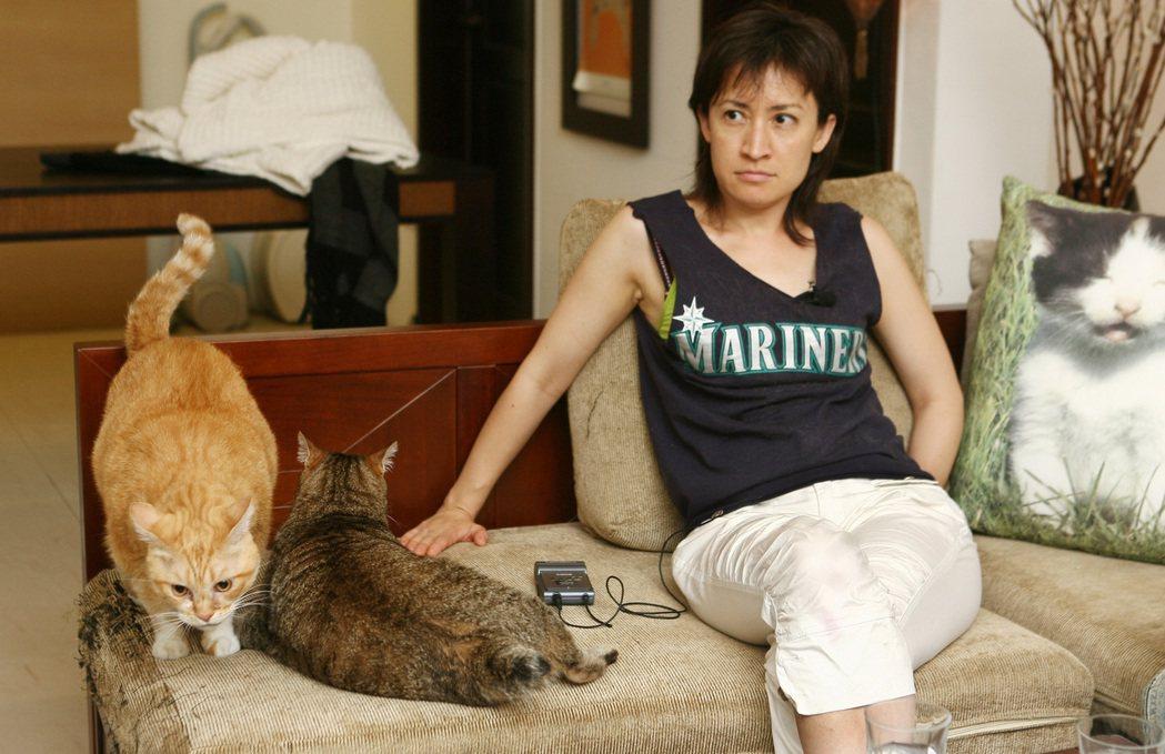 視貓如家人的國安會諮詢委員蕭美琴,預定七月下旬赴任駐美代表,將帶四隻貓同行。圖/...